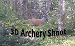 3-D Archery Shoot
